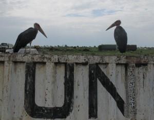 The filth of the UN camp in Bentiu