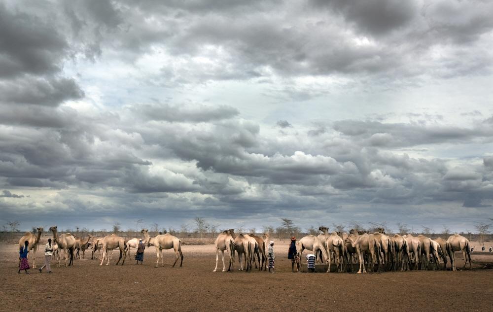 Kenya, Wajir