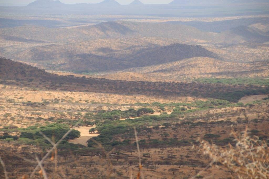 drought in Samburu district(Photo Koert Lindijer)